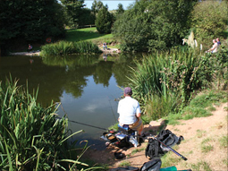 Yeatheridge Farm Fishing Lakes