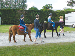 Yeatheridge Riding Stables
